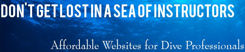 pro website banner