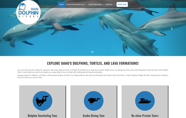 Dolphin Snorkel Tours